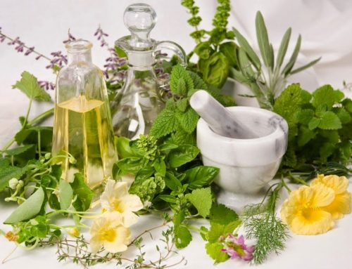 Mengenal Keragaman dan Manfaat Tanaman Herbal